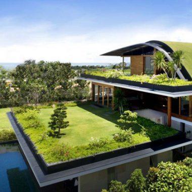 Giải pháp sinh thái giúp chống nóng cho nhà ở