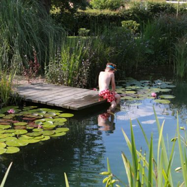 Hồ bơi sinh thái- xử lý nước trong hồ bơi được các bộ lọc sinh học