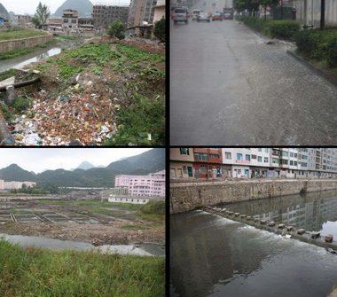 Bờ sông tự nhiên được đưa trở lại để khôi phục hệ sinh thái ven sông