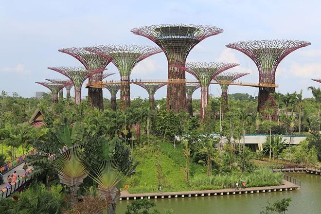 Biến Singapore thành công viên khổng lồ- 2