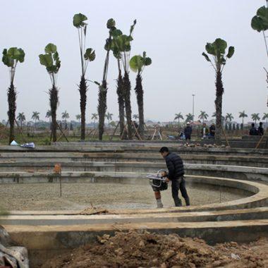 Cập nhật tiến độ thị công dự án CCDV9 Nam An Khánh (lần 2)