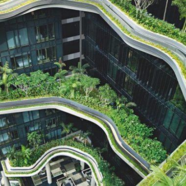 Biến Singapore thành công viên khổng lồ