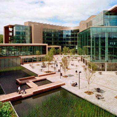 Thiết kế cảnh quan trụ sở chính Quỹ từ thiện Bill & Mellinda